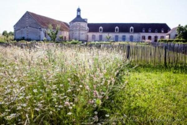 Rendez Vous aux Jardins 2018 -Le Jardin du Colombier Vert