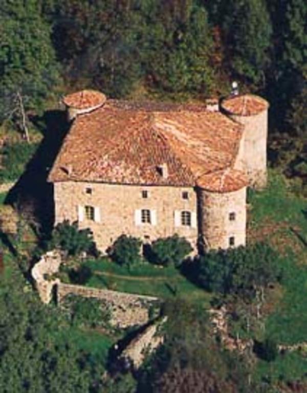 Journées du patrimoine 2020 - Visite guidée du château et des jardins du Pin