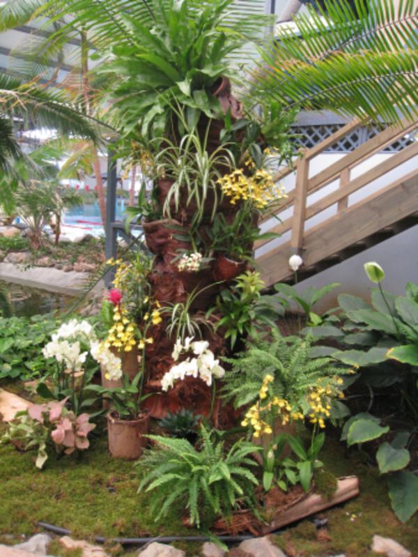 Rendez Vous aux Jardins 2018 -Serre tropicale des Antilles de Jonzac
