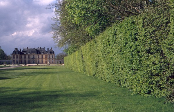 Rendez Vous aux Jardins 2018 -Parc et jardins du château de la Motte-Tilly