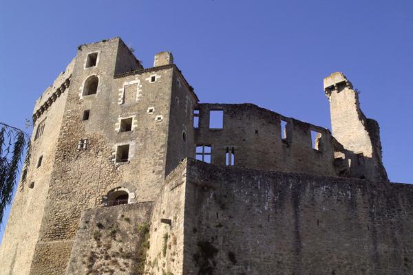 Journées du patrimoine 2019 - Visite libre du Château de Clisson