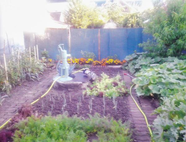 Rendez Vous aux Jardins 2018 -Le jardin aux volets bleus