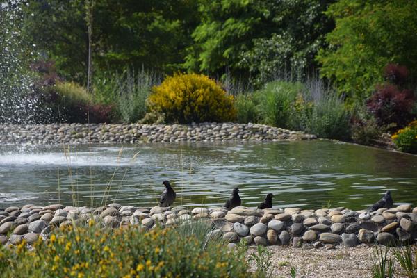 Rendez Vous aux Jardins 2018 -Jardin des Traces