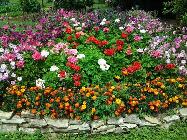 Rendez Vous aux Jardins 2018 -Jardin de l'amitié