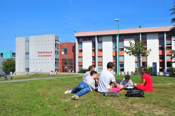 Bibliothèque universitaire Villejean Santé