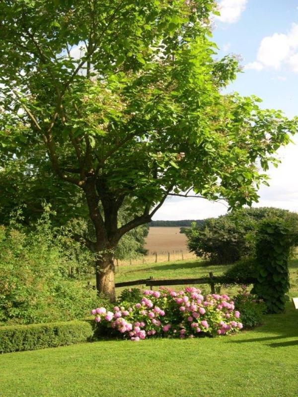 Rendez Vous aux Jardins 2018 -Le Jardin des Vieilles Vignes