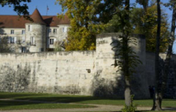 Crédits image : Office de Tourisme Saint-Dizier Der et Blaise