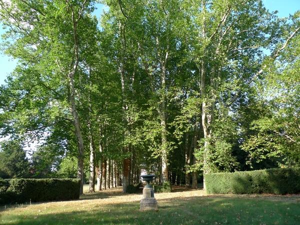 Rendez Vous aux Jardins 2018 -Parc du domaine de la Tour