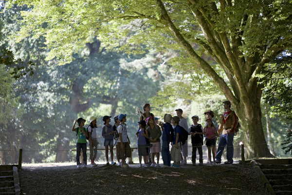 Rendez Vous aux Jardins 2018 -Parc botanique et animalier de Branféré