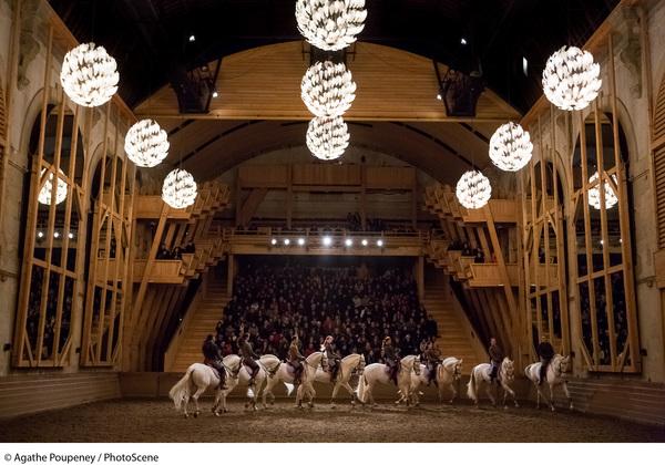 Journées du patrimoine 2019 - Visite libre de l'Académie équestre nationale du domaine de Versailles