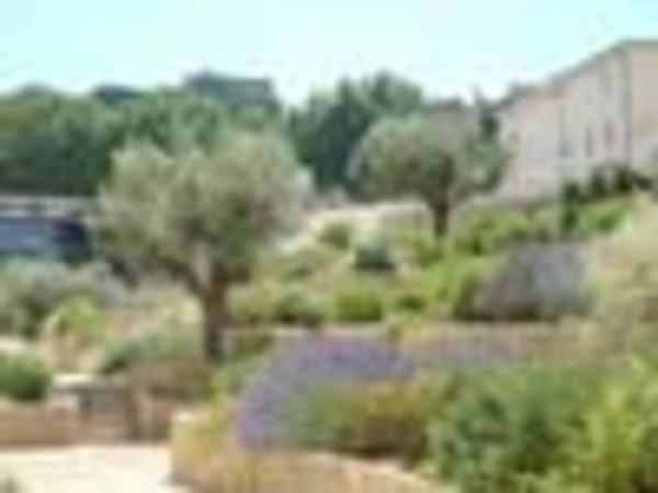 Rendez Vous aux Jardins 2018 -Jardin des senteurs
