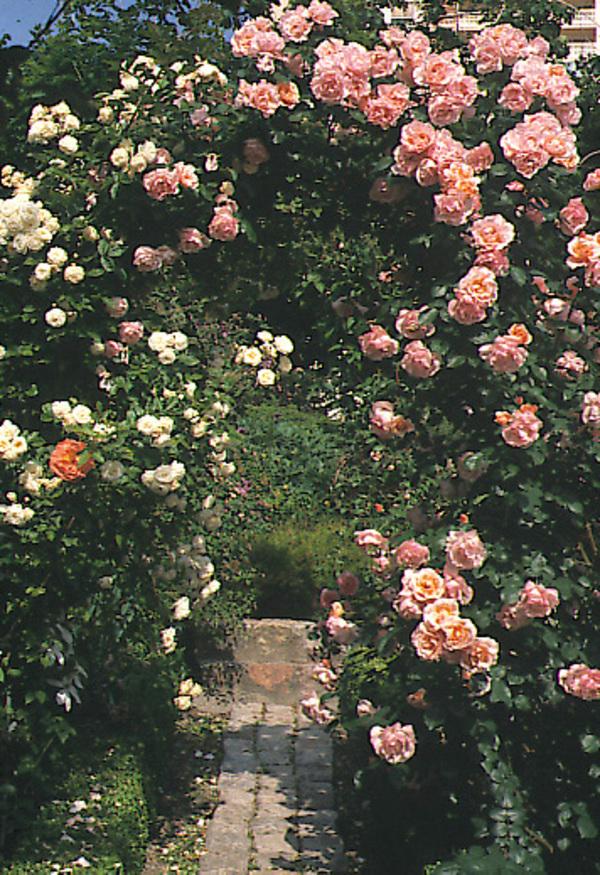 Rendez Vous aux Jardins 2018 -La Bonne Maison