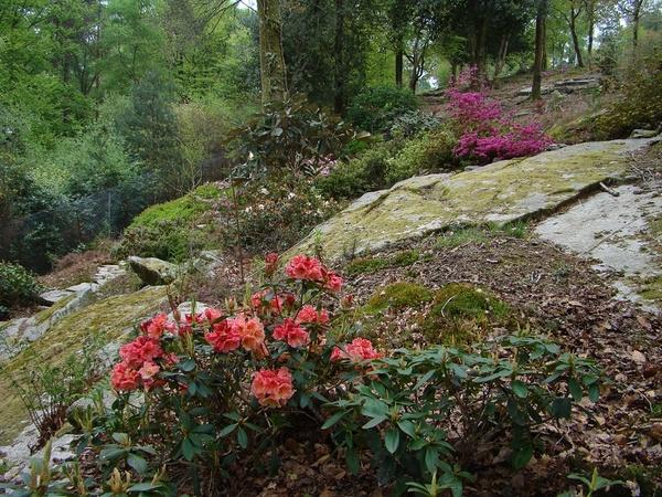 Rendez Vous aux Jardins 2018 -Les jardins de Treuscoat