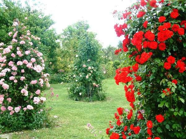 Rendez Vous aux Jardins 2018 -Jardin des 5 sens et des formes premières