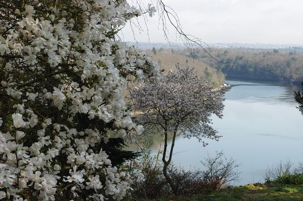 Rendez Vous aux Jardins 2018 -Domaine de Boutiguéry et sa pépinière
