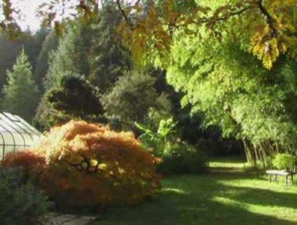 Rendez Vous aux Jardins 2018 -Arboretum de la Martinière