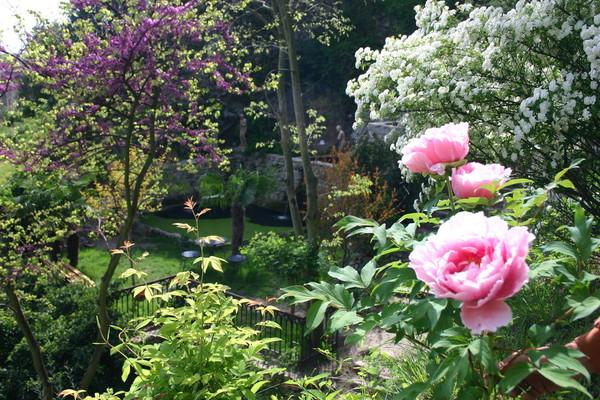 Journées du patrimoine 2017 - Pause au jardin d'Eden : un bain de jouvence dans un site historique