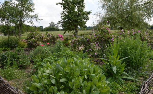 Jardins de l'abbaye de Bonnefont