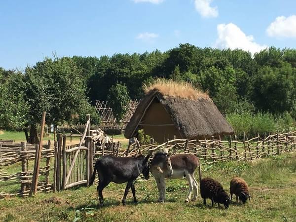 Rendez Vous aux Jardins 2018 -Parc Historique ORNAVIK