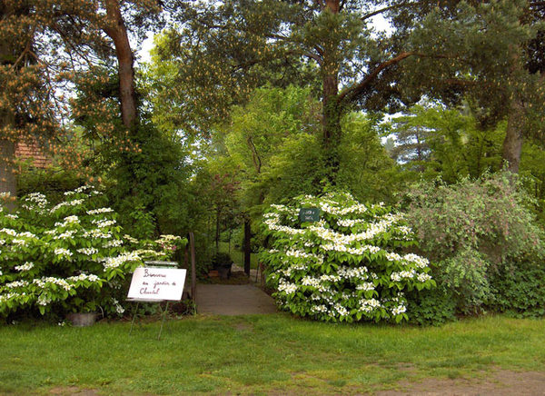 Rendez Vous aux Jardins 2018 -Jardin de Chantal