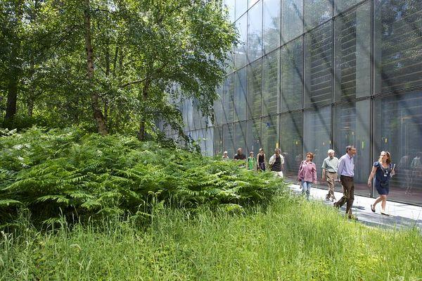 Rendez Vous aux Jardins 2018 -Jardin-forêt de la Bibliothèque nationale de France - François-Mitterrand