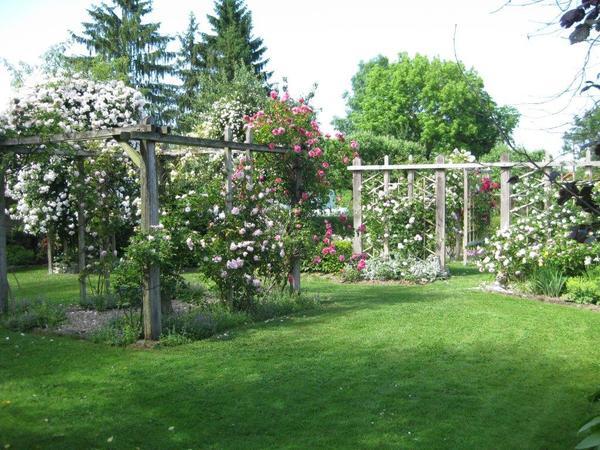 Rendez Vous aux Jardins 2018 -Le Jardin du Chat Perché