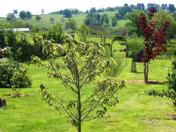 Rendez Vous aux Jardins 2018 -Les jardins d'Ordesa