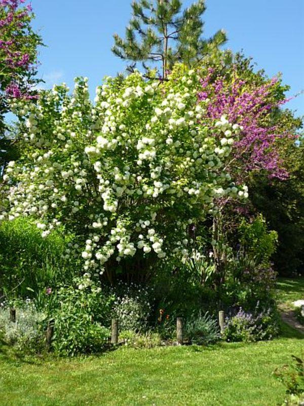 Rendez Vous aux Jardins 2018 -La ferme fleurie de Joëlle