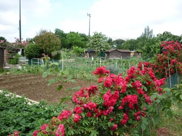 Rendez Vous aux Jardins 2018 -Jardins familiaux de partage-faourette