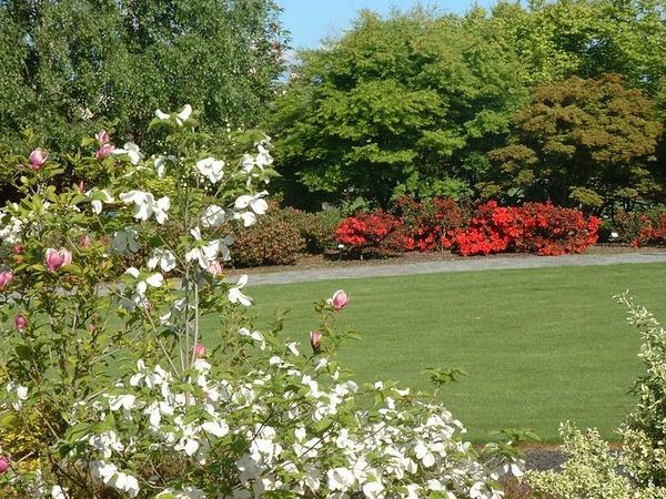 Rendez Vous aux Jardins 2018 -Arboretum Jean Huchet et pépinières