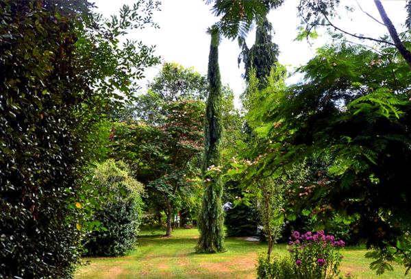 Rendez Vous aux Jardins 2018 -Arboretum Al Gaulhia