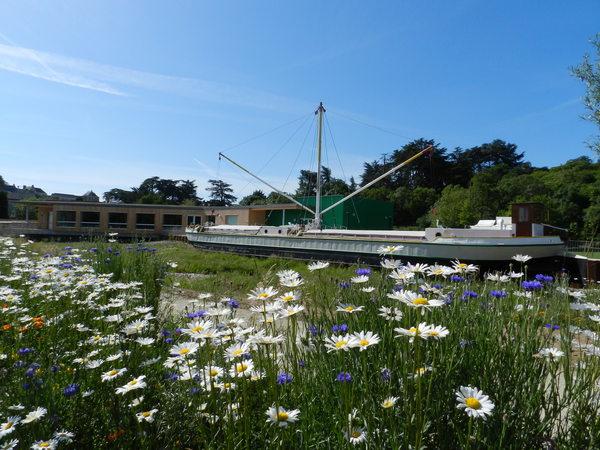 Journées du patrimoine 2017 - Découverte de la Marine de Loire