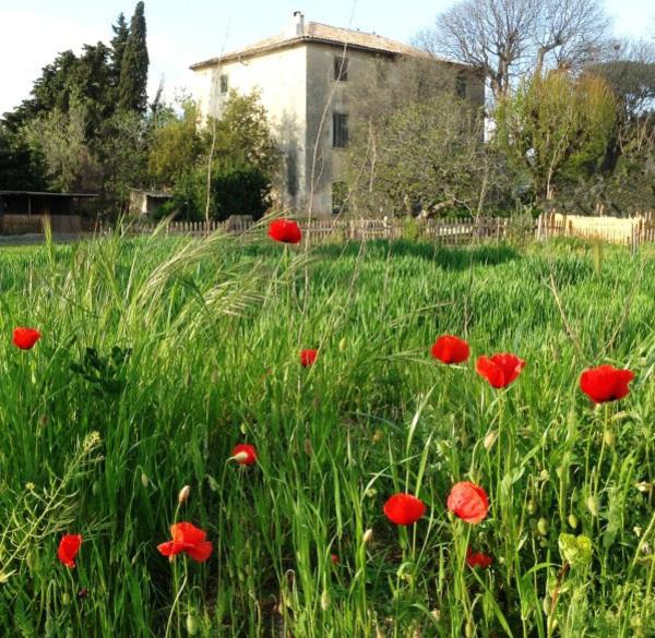 Rendez Vous aux Jardins 2018 -Jardins de la bastide Marin
