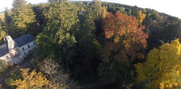 Crédits image : Office national des forêts