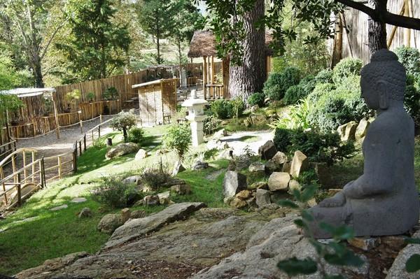 Rendez Vous aux Jardins 2018 -Jardin arboretum de bonsaï