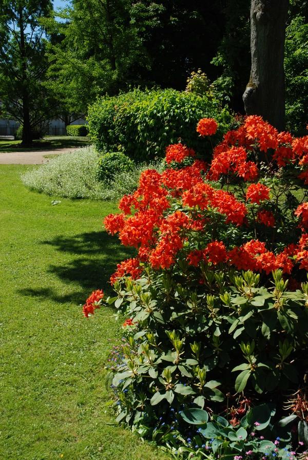 Rendez Vous aux Jardins 2018 -Jardin botanique