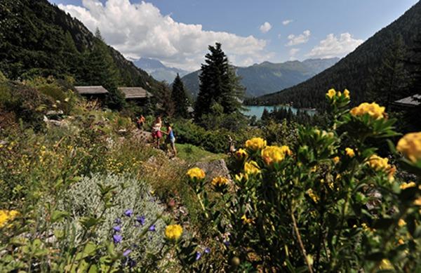 Rendez Vous aux Jardins 2018 -Jardin botanique alpin Flore-Alpe
