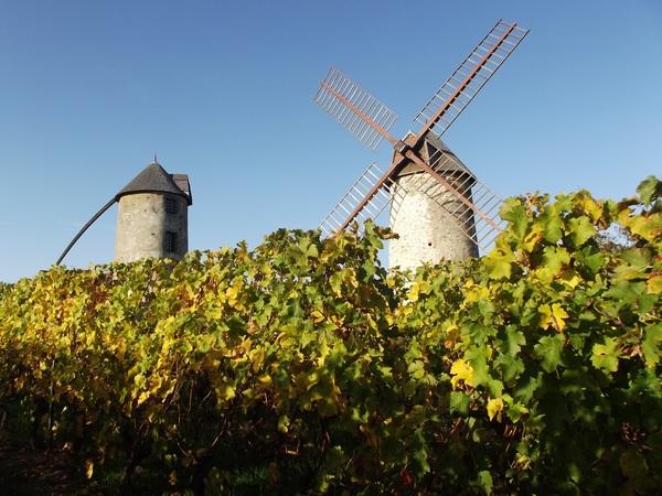 Journées du patrimoine 2020 - Visite guidée des moulins d'Ardenay
