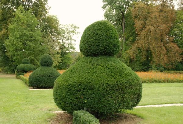 Rendez Vous aux Jardins 2018 -Parc du château du Pailly
