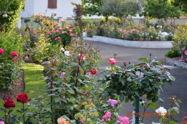 Rendez Vous aux Jardins 2018 -Le Jardin des Roses