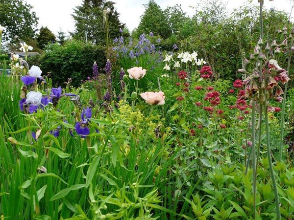 Rendez Vous aux Jardins 2018 -La fieffe aux Landelles