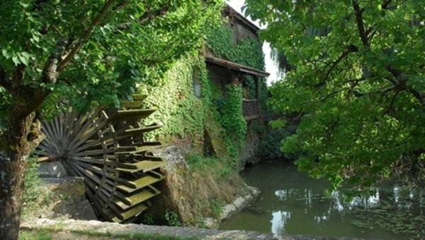 Rendez Vous aux Jardins 2018 -Moulin de Cocussotte