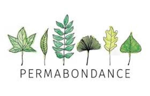 Permabondance