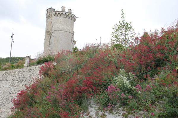 Crédits image : Ville de Mehun-sur-Yèvre