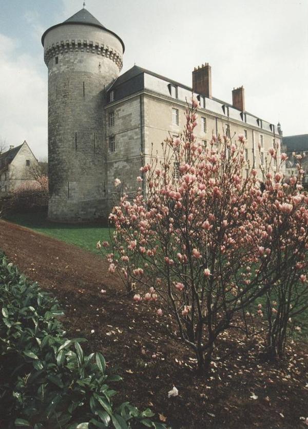 Nuit des musées 2018 -Château de Tours