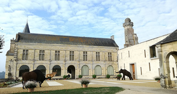 Nuit des musées 2019 -Musée départemental de préhistoire
