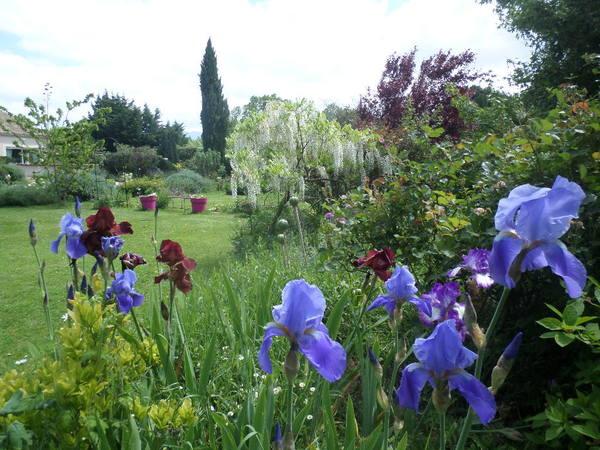 Rendez Vous aux Jardins 2018 -La palette des couleurs
