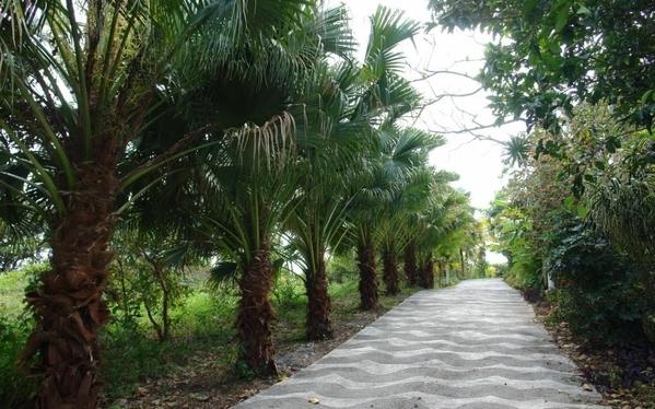 Rendez Vous aux Jardins 2018 -Gîtes la palmeraie