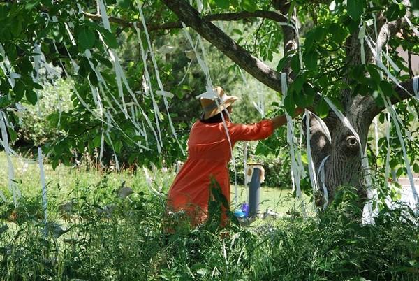 Rendez Vous aux Jardins 2018 -Parc Pierre-Rabhi