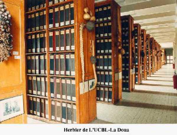 Journées du patrimoine 2019 - Visite commentée des herbiers de l'université Lyon1